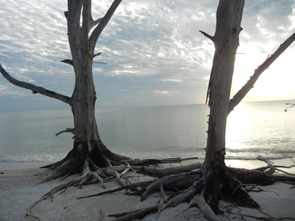 Lover's Key State Park, FL