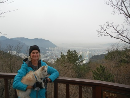 Hiking in South Korea; overview of Busan.