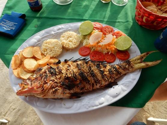5-16-16-holbox-fish-dinner-1